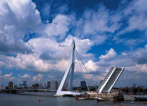 Erasmus-Bridge.jpg