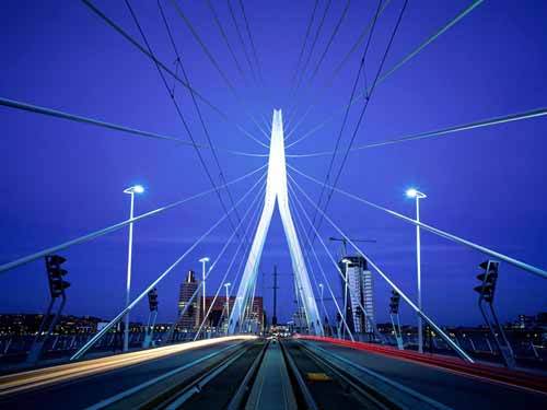 Erasmus_Bridge_Rotterdam_The_Netherlands.jpg